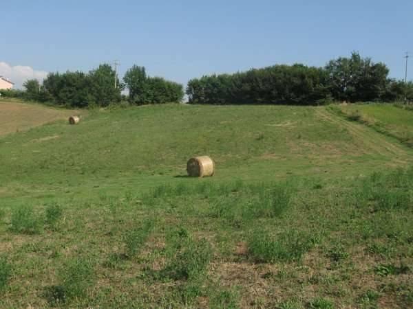 Terreno Agricolo in vendita a Alvignano, 9999 locali, prezzo € 28.000 | CambioCasa.it