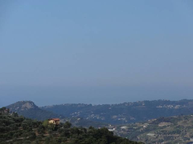Rustico / Casale in vendita a Vallebona, 2 locali, prezzo € 120.000 | CambioCasa.it