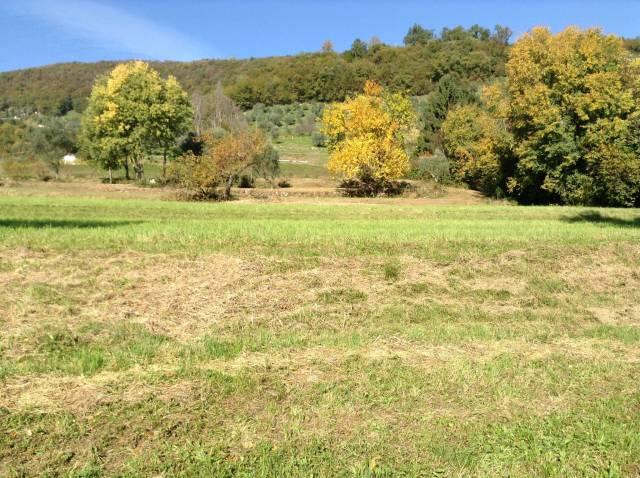 Terreno Agricolo in vendita a Bassano del Grappa, 9999 locali, Trattative riservate | CambioCasa.it