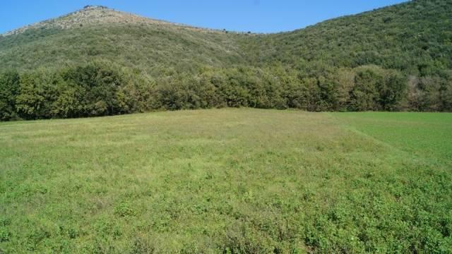 Terreno Agricolo in vendita a Piana di Monte Verna, 9999 locali, prezzo € 80.000 | CambioCasa.it
