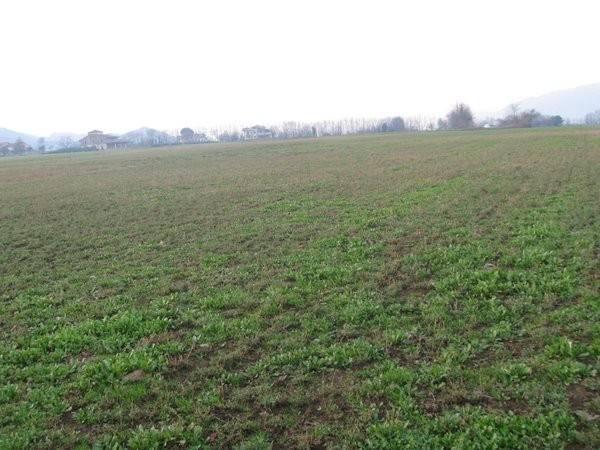 Terreno Agricolo in vendita a Alvignano, 9999 locali, prezzo € 80.000 | CambioCasa.it