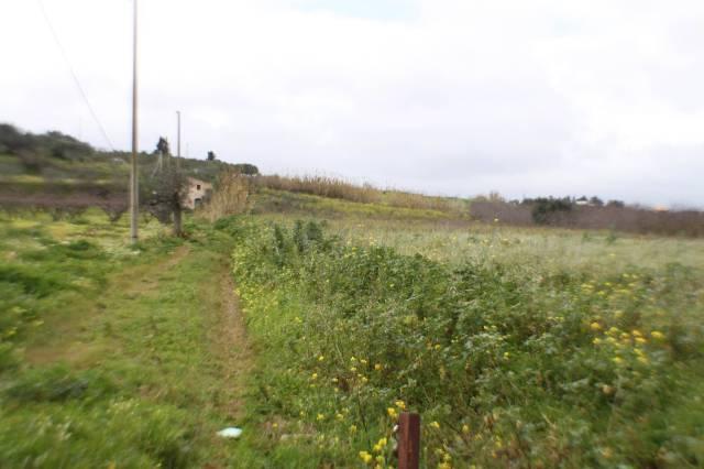 Terreno Agricolo in vendita a Partinico, 9999 locali, prezzo € 55.000   CambioCasa.it