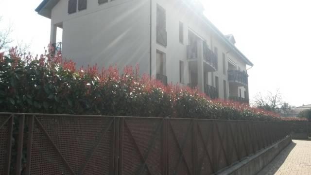 Appartamento in vendita a Cassano Magnago, 3 locali, prezzo € 165.000   CambioCasa.it