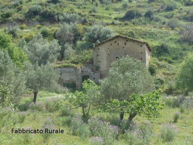 Terreno Agricolo in vendita a Marina di Gioiosa Ionica, 9999 locali, Trattative riservate | CambioCasa.it
