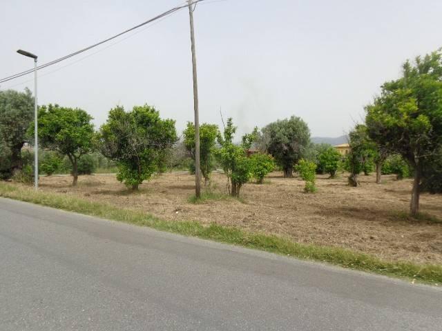 Terreno Agricolo in vendita a Marina di Gioiosa Ionica, 9999 locali, prezzo € 90.000 | CambioCasa.it
