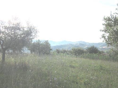 Terreno Edificabile Residenziale in vendita a Colledara, 9999 locali, prezzo € 49.500 | CambioCasa.it