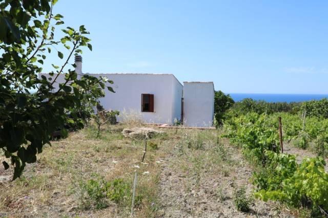 Terreno Agricolo in vendita a Sorso, 9999 locali, prezzo € 120.000 | CambioCasa.it