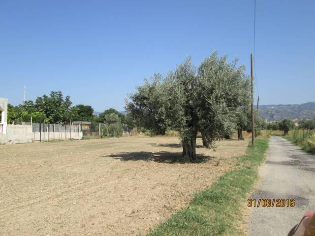 Terreno Edificabile Artigianale in vendita a Marina di Gioiosa Ionica, 9999 locali, Trattative riservate | CambioCasa.it