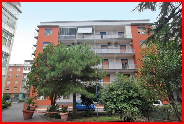 Appartamento in affitto a Gravina di Catania, 3 locali, prezzo € 500 | CambioCasa.it