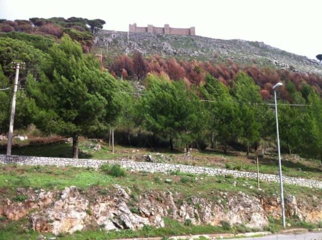 Terreno Agricolo in vendita a Monreale, 9999 locali, prezzo € 60.000 | CambioCasa.it
