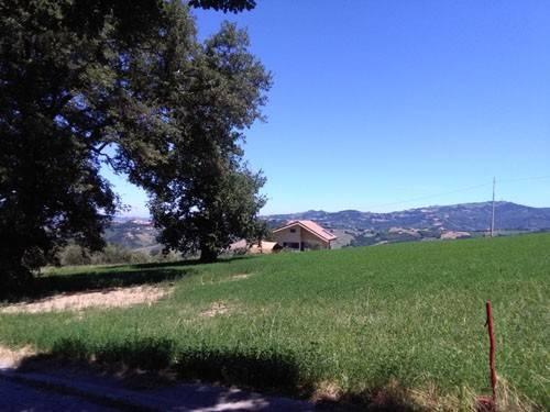 Terreno Agricolo in vendita a Colledara, 9999 locali, prezzo € 22.500 | CambioCasa.it