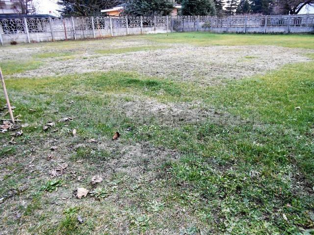 Terreno Edificabile Residenziale in Vendita a Dairago