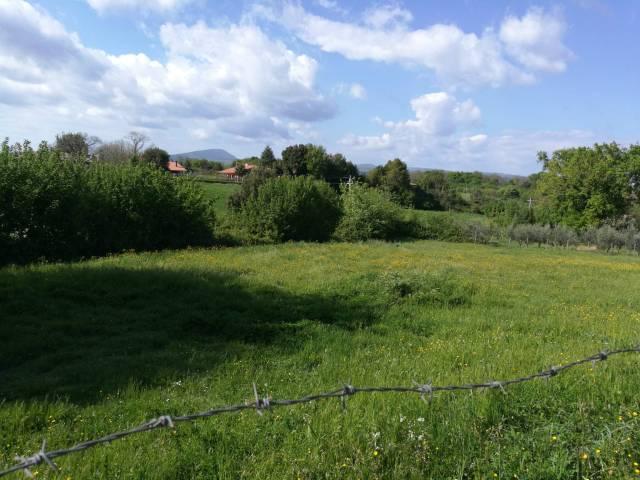 Terreno Edificabile Residenziale in vendita a Bassano Romano, 9999 locali, prezzo € 149.000 | CambioCasa.it