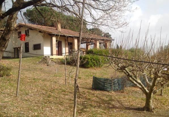 Villa in affitto a Anguillara Sabazia, 3 locali, prezzo € 1.300 | CambioCasa.it