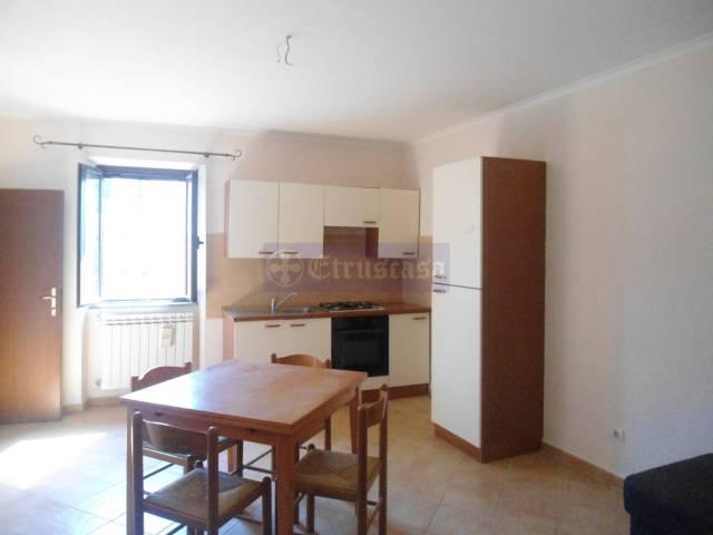 Appartamento in affitto a Monte Romano, 2 locali, prezzo € 300 | CambioCasa.it