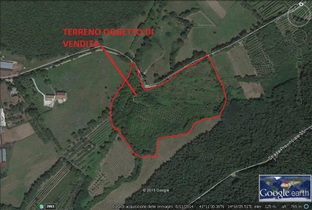 Terreno Agricolo in vendita a Pontelatone, 9999 locali, prezzo € 99.000 | CambioCasa.it
