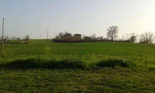Terreno Agricolo in vendita a Castelvetro di Modena, 9999 locali, prezzo € 95.000 | CambioCasa.it