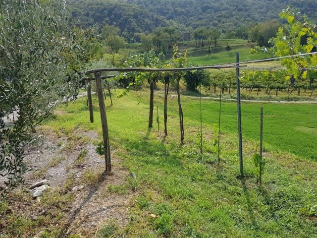 Terreno Agricolo in vendita a Concesio, 9999 locali, prezzo € 140.000 | CambioCasa.it