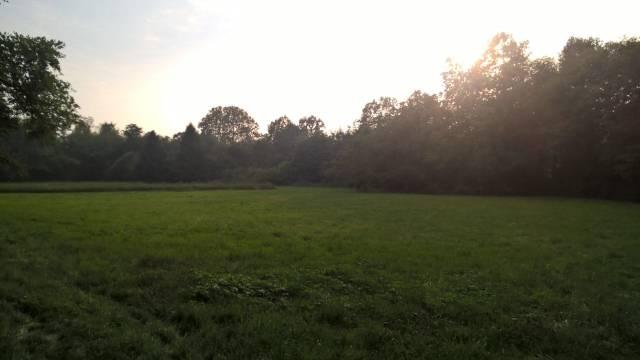 Terreno Agricolo in Vendita a Villa Guardia
