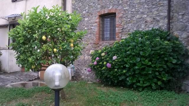 Appartamento in affitto a Capannori, 9999 locali, prezzo € 530 | CambioCasa.it