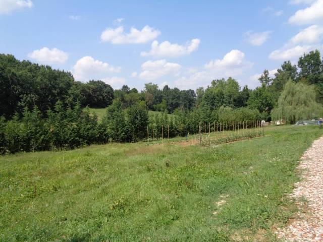 Terreno Edificabile Residenziale in vendita a Bra, 9999 locali, prezzo € 110.000 | CambioCasa.it