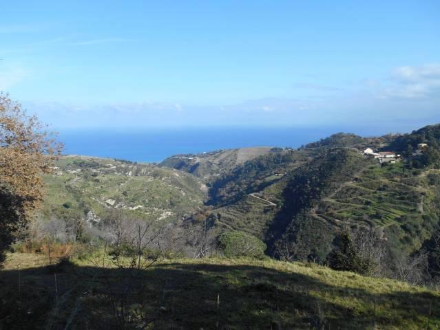 Terreno Agricolo in vendita a Messina, 9999 locali, prezzo € 30.000 | CambioCasa.it