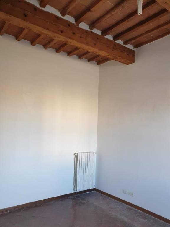 Appartamento in Affitto a Pisa Periferia: 2 locali, 55 mq