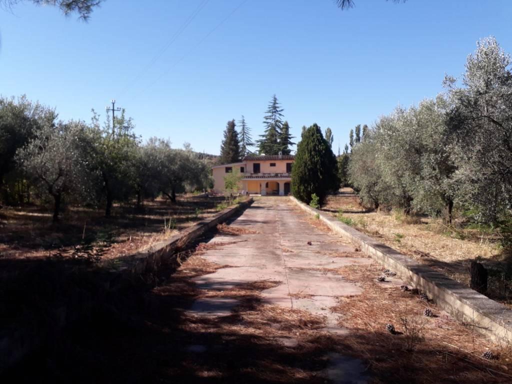 Villa in vendita a Palombara Sabina, 10 locali, prezzo € 215.000 | CambioCasa.it
