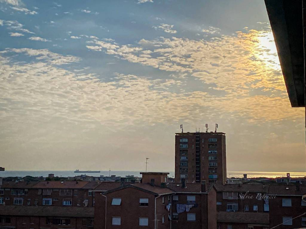 Appartamento in Vendita a Livorno Periferia Sud: 4 locali, 100 mq