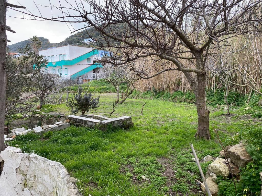 Stabile / Palazzo da ristrutturare in vendita Rif. 5781828