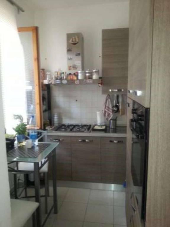 Appartamento in buone condizioni arredato in affitto Rif. 7227213