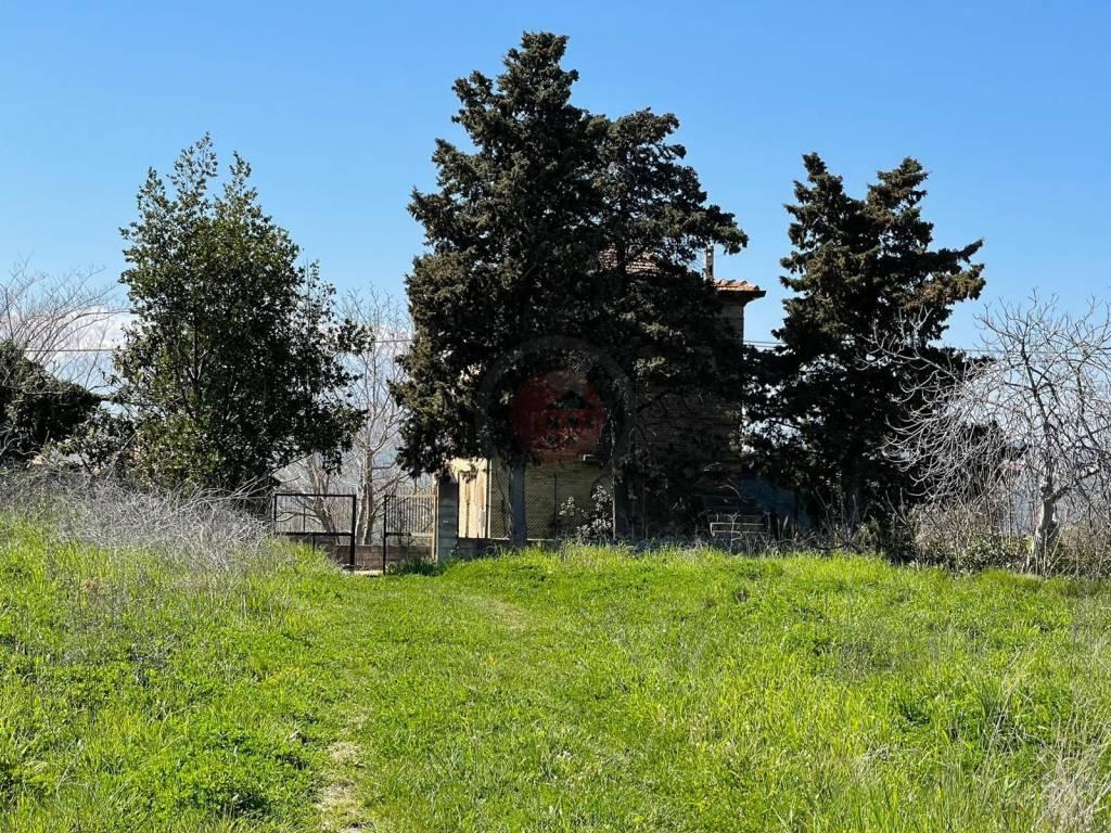 Rustico / Casale da ristrutturare in vendita Rif. 7436569