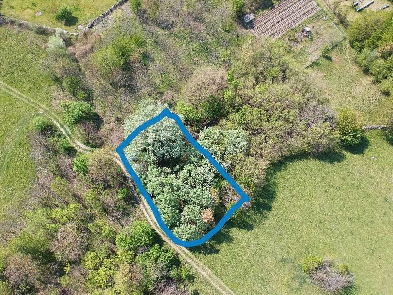 Terreno Agricolo in vendita a Bussoleno, 9999 locali, prezzo € 8.000 | CambioCasa.it