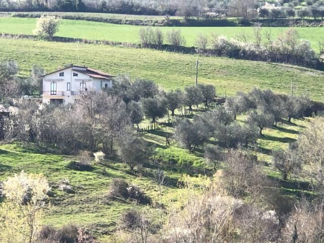 Rustico / Casale in buone condizioni in vendita Rif. 5564761