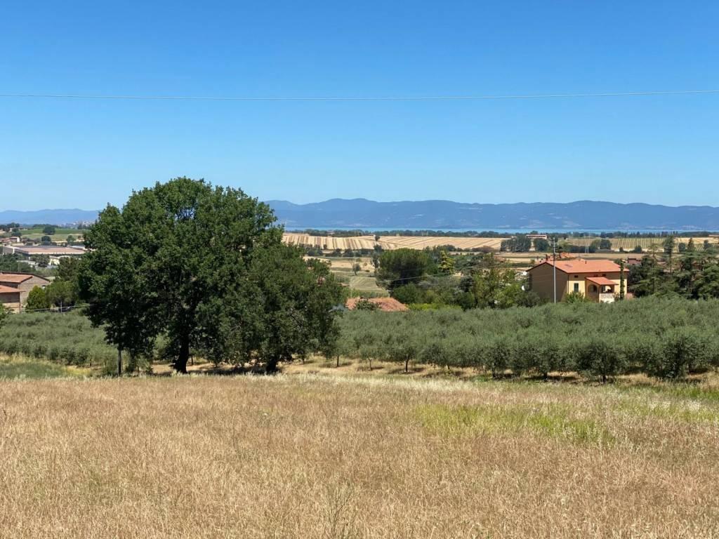 Villa in Vendita a Panicale Periferia: 4 locali, 190 mq
