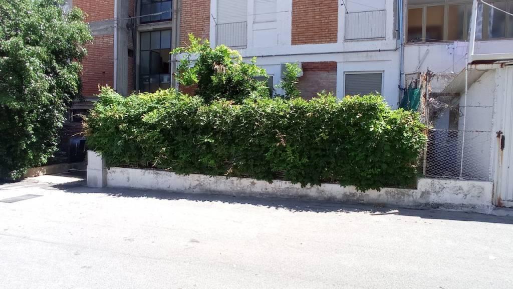 Appartamento con giardino, foto 3