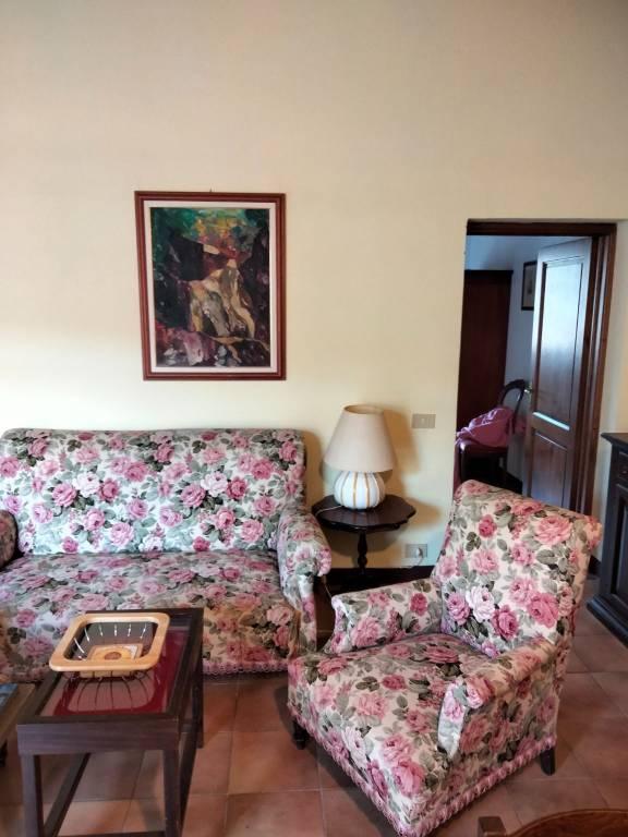 Appartamento in ottime condizioni arredato in affitto Rif. 7749284