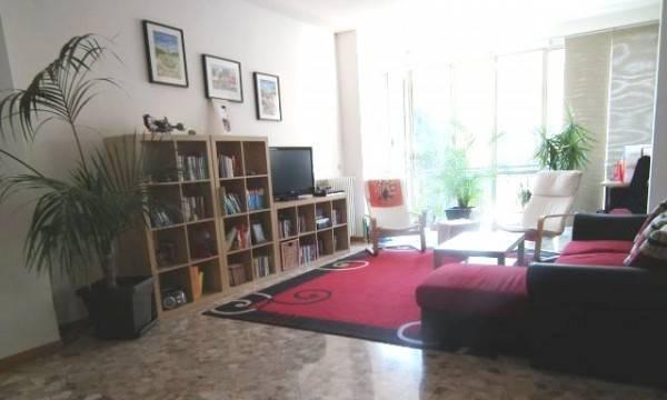 Appartamento in ottime condizioni parzialmente arredato in affitto Rif. 7833293