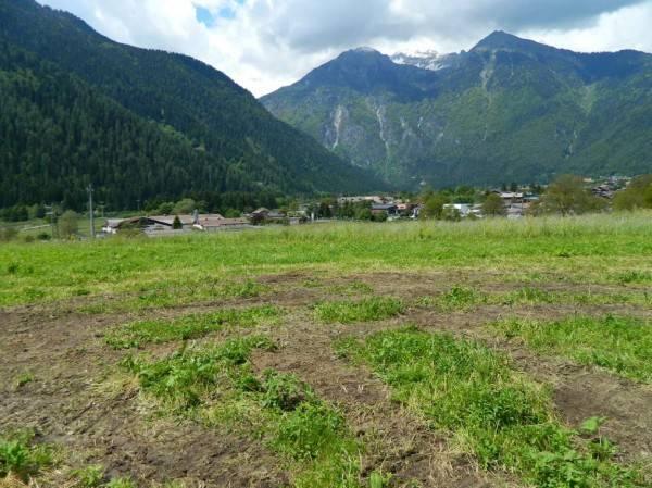 Terreno residenziale in Vendita a Pinzolo Periferia: 677 mq  - Foto 1