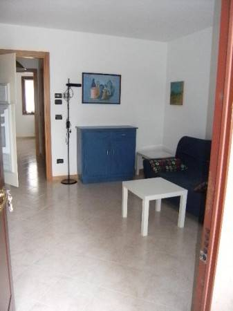Appartamento in ottime condizioni arredato in affitto Rif. 6852685