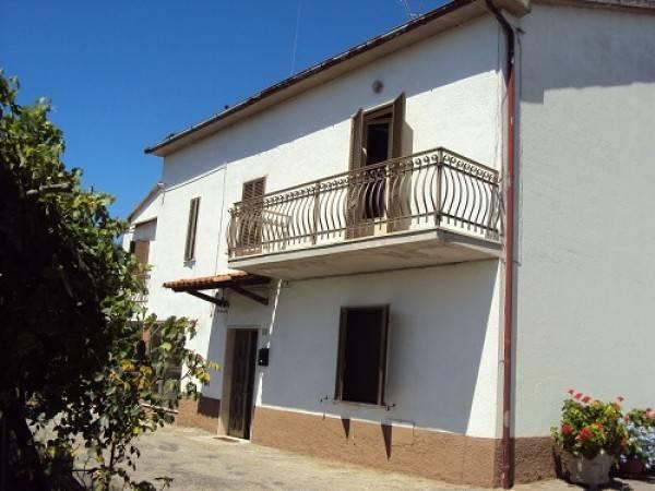 Appartamento in buone condizioni parzialmente arredato in affitto Rif. 4831944