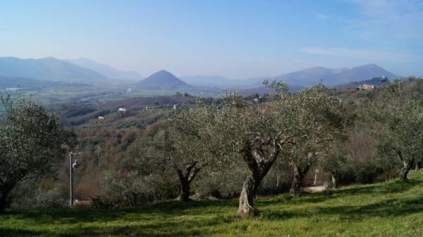 Terreno Agricolo in vendita a Caiazzo, 9999 locali, prezzo € 110.000 | CambioCasa.it