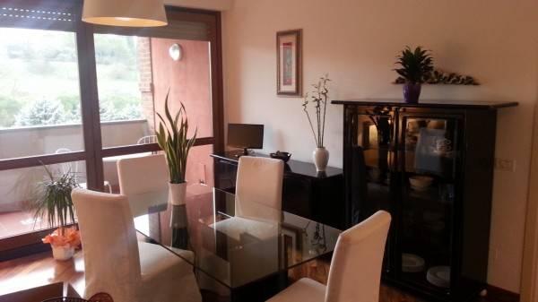 Appartamento in ottime condizioni arredato in affitto Rif. 8922210