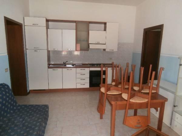Appartamento in buone condizioni arredato in affitto Rif. 5004205