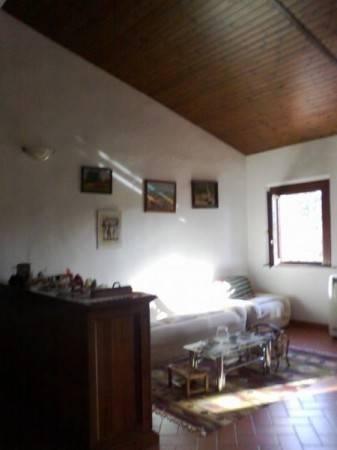 Rustico in Vendita a Crespina Lorenzana: 5 locali, 234 mq