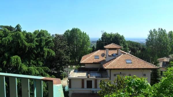Appartamento in ottime condizioni arredato in affitto Rif. 4459078