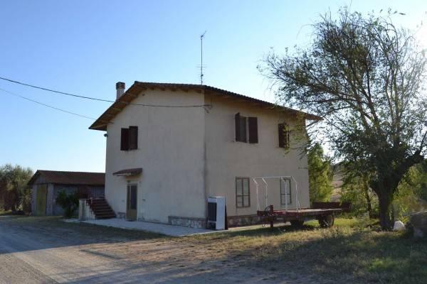 Rustico / Casale in buone condizioni in vendita Rif. 7044768
