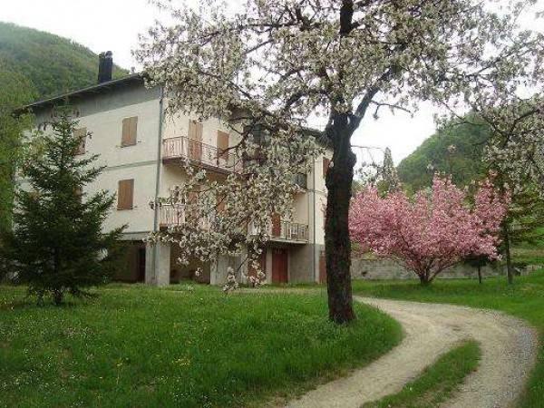 Appartamento in ottime condizioni parzialmente arredato in vendita Rif. 4910443
