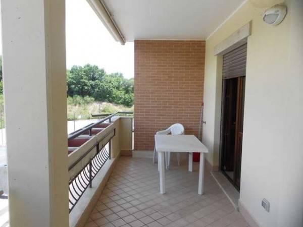 Appartamento in ottime condizioni arredato in affitto Rif. 6253723