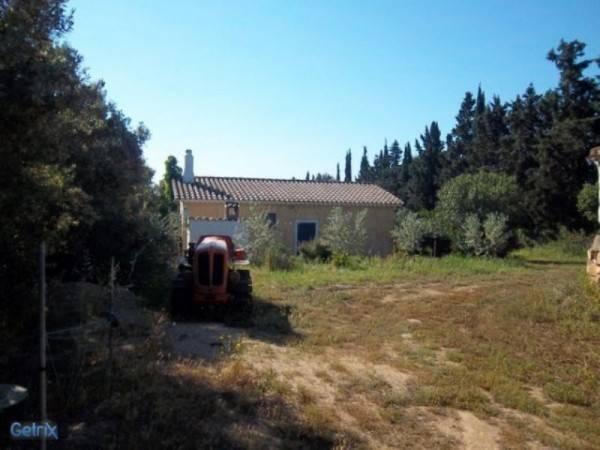 Terreno Agricolo in vendita a San Vito, 9999 locali, prezzo € 165.000   CambioCasa.it